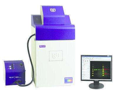 Multiplex Fluorescent Western Blot Detection Using The