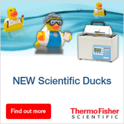 "Special ""collectible"" rubber ducks for Thermo Scientific Water Bath"