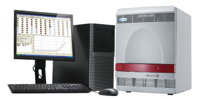Real-Time PCR Assay Suite for STEC Detection Extends AOAC Certification for 25g Flour and Ground Beef