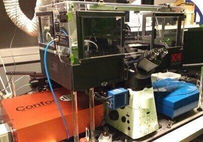 New Super Resolution Confocal Imaging System at ScopeM