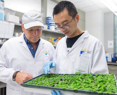 Discovery Could Lead to more Pest-Resistant Crops.