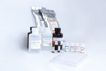 New Quantitative COVID-19 Test Kit for Precision Antibody Detection Introduced