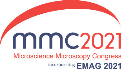 RMS Virtual Super-Resolution Workshop at mmc2021